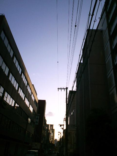 ファイル 1318-1.jpg