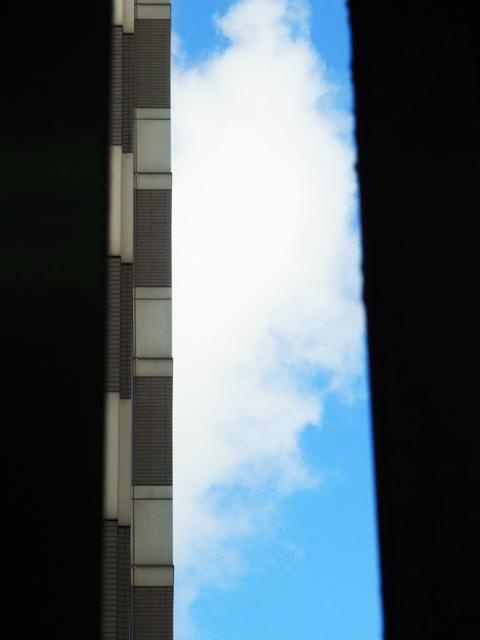 ファイル 1466-1.jpg